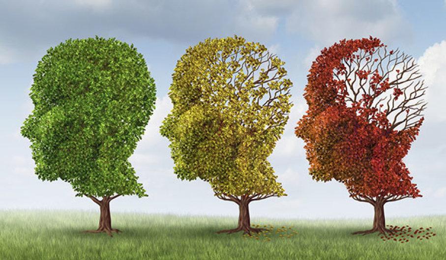 деменция-факти