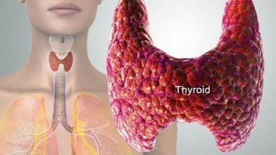 Photo of Щитовидна жлеза, как функционира, симптоми на хипертиреоидизъм