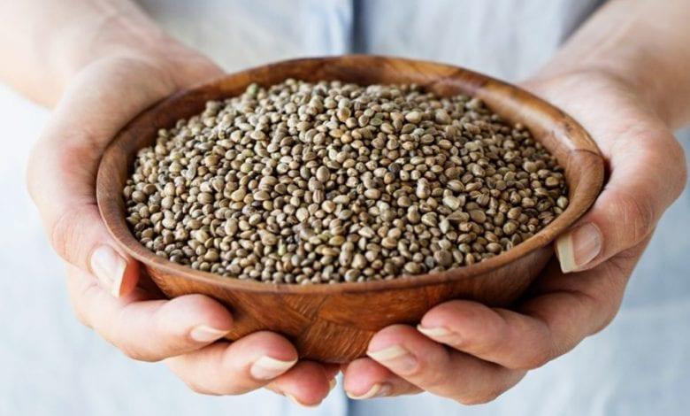 Photo of Конопено семе: хранене със семена от коноп + 7 ползи