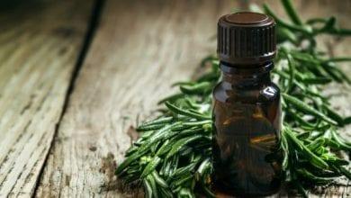 Топ 10 ползи от чаеното масло: