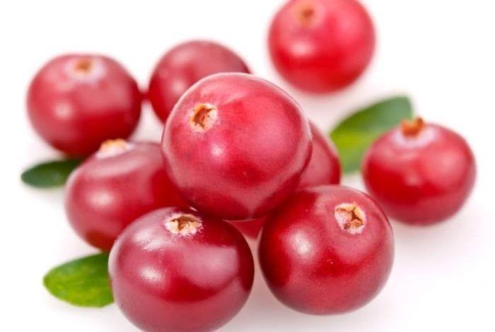 Photo of Червена боровинка: Как се прави сироп и Какви ползи има