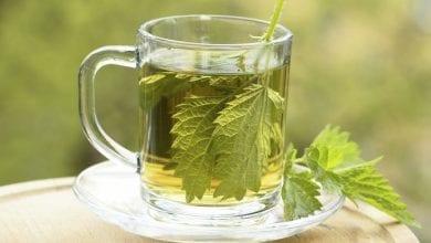 Photo of 9 невероятни ползи на чай от коприва