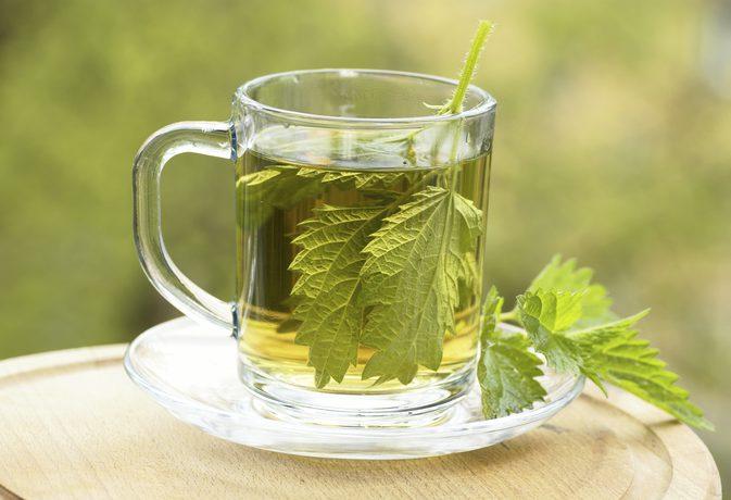 чай-от-коприва-ползи-приготвяне