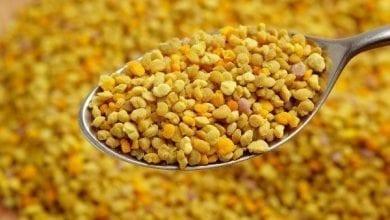 Photo of Пчелен прашец: Отслабване и Лечение: Над 8 ползи от супер храната