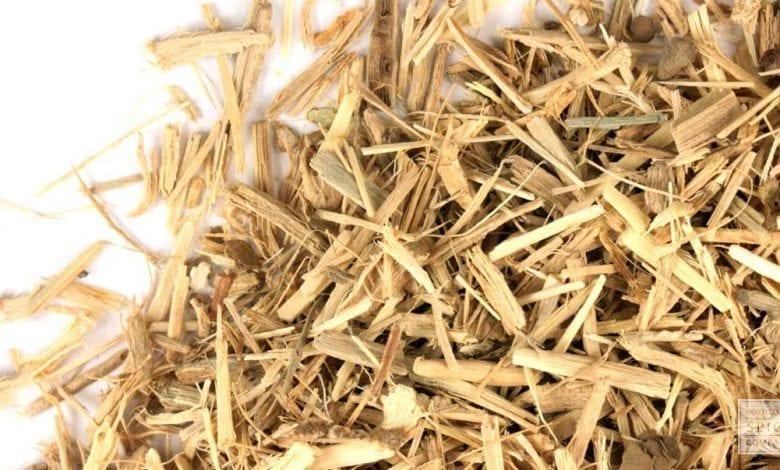Photo of Топ 10 ползи от Сибирски женшен