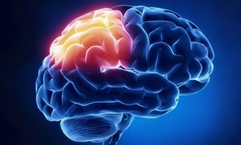 Енцефалитът-причини-видове-лечение