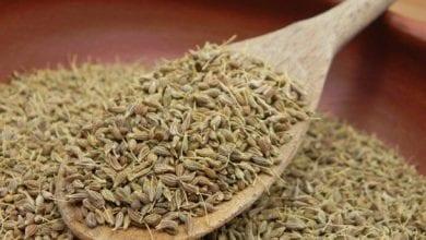 Photo of Анасонови семена: помага за кръвната захар и язва + 5 ползи за здравето