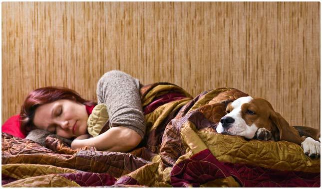 естествени-средства-за-сън