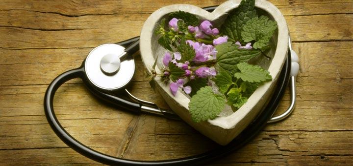 10-Билки-и-добавки-за-сърце