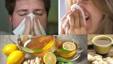 Photo of 8 билки и домашни средства за лечение на грип и настинка