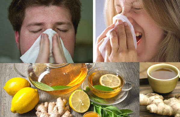 8-билки-и-Домашни-средства за-Лечение-на-Грип-и-настинка
