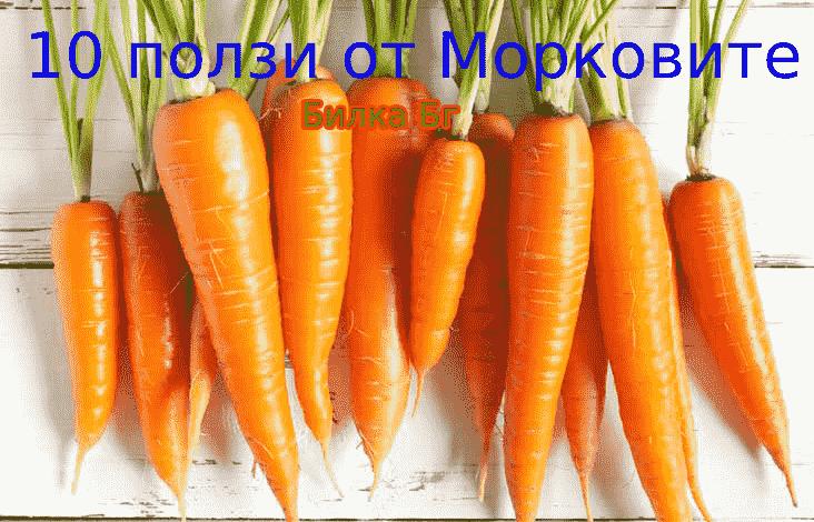 10-ползи-от-Морковите
