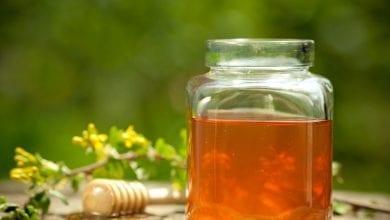 мед-от-детелина