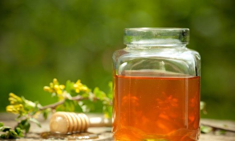 Photo of Какво е детелинов мед? Употреба и ползи