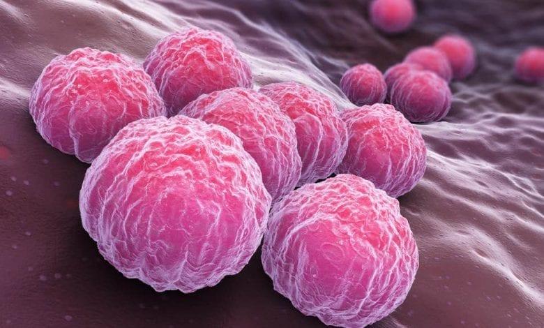Photo of Полово предавани болести: неща които трябва да знаете!