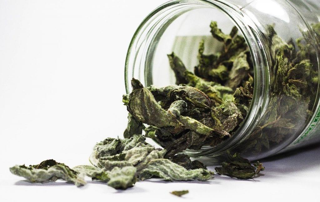 Действие на чай от мента при 8 заболявания