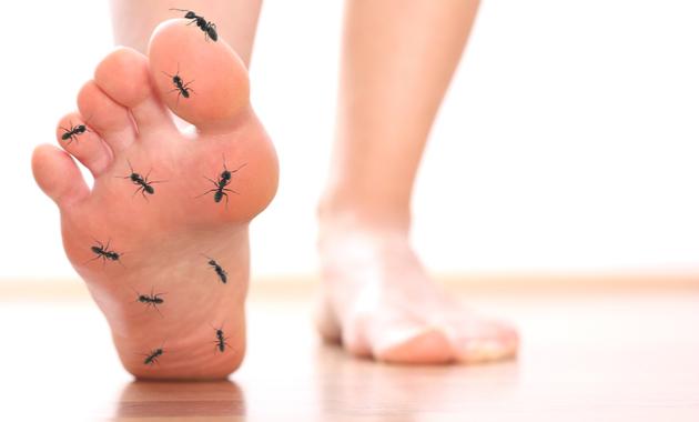 Photo of Изтръпване на пръстите на краката – 8 възможни причини