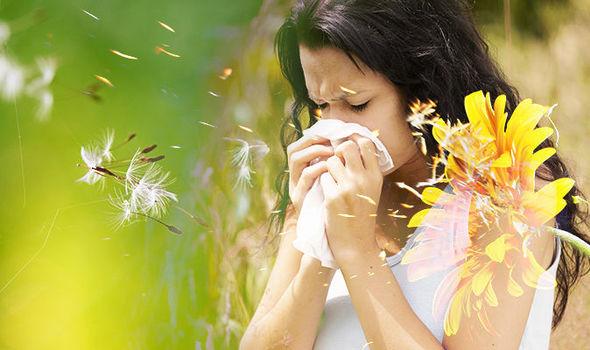 Сенна хрема: Eфикасно Лечение на сенна хрема