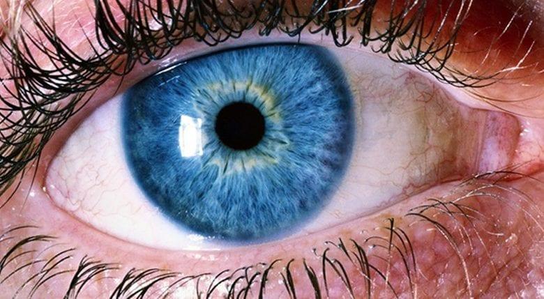 Photo of Отлепване на ретината: Какви са причините и лечението