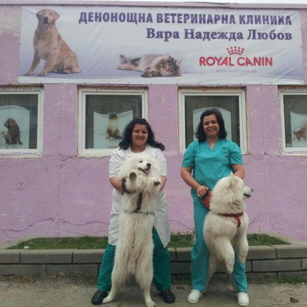 Денонощна ветеринарна клиника Вяра Надежда Любов